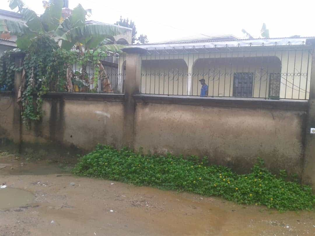 House (Villa) for sale - Douala, Logbessou I, Carrefour Logbessou - 1 living room(s), 5 bedroom(s), 2 bathroom(s) - 35 000 000 FCFA / month