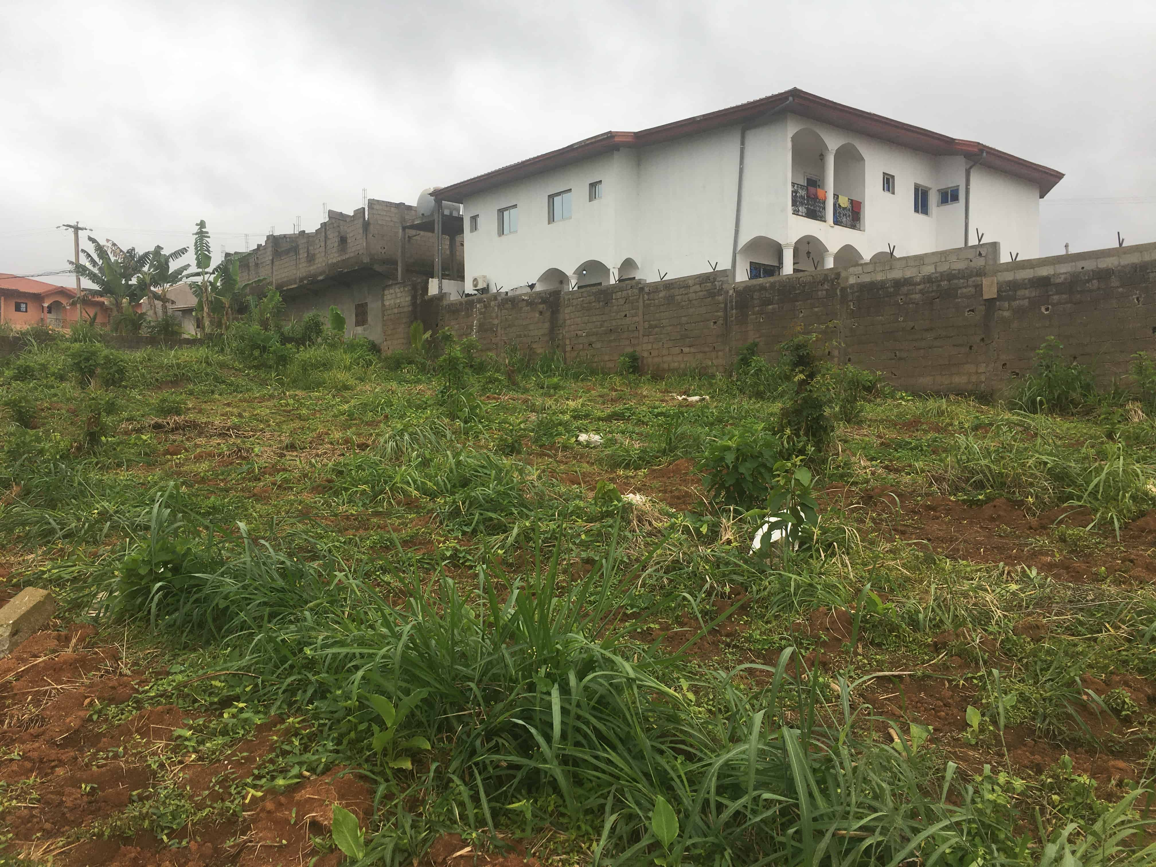 Land for sale at Yaoundé, Odza, Minkan - 1000 m2 - 30 000 000 FCFA