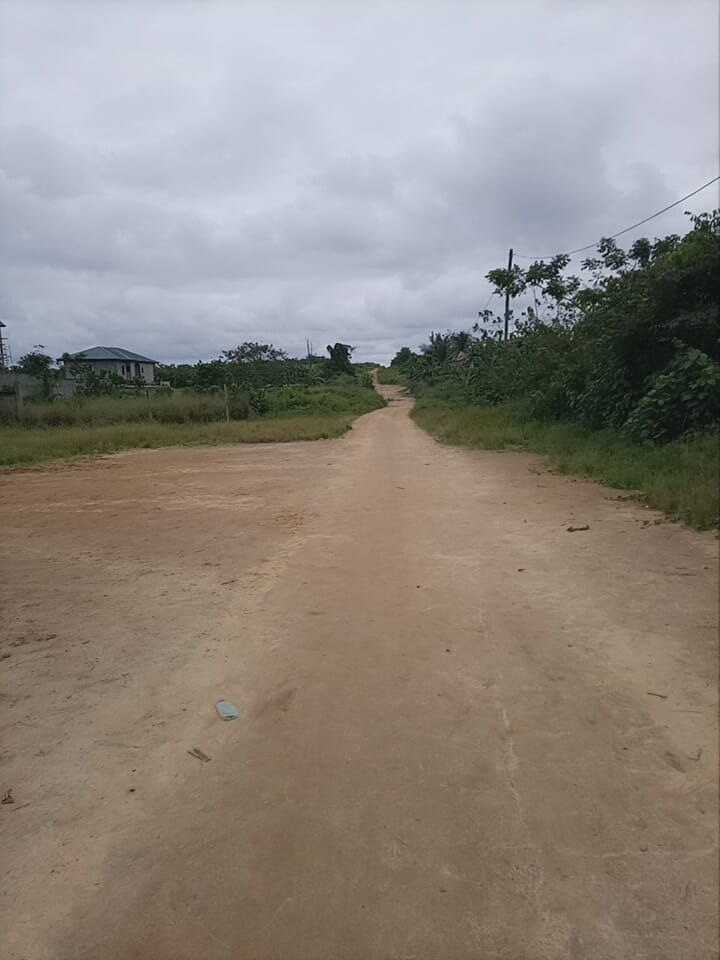 Land for sale at Douala, Yassa, Derrière le stade - 2040 m2 - 183 600 000 FCFA