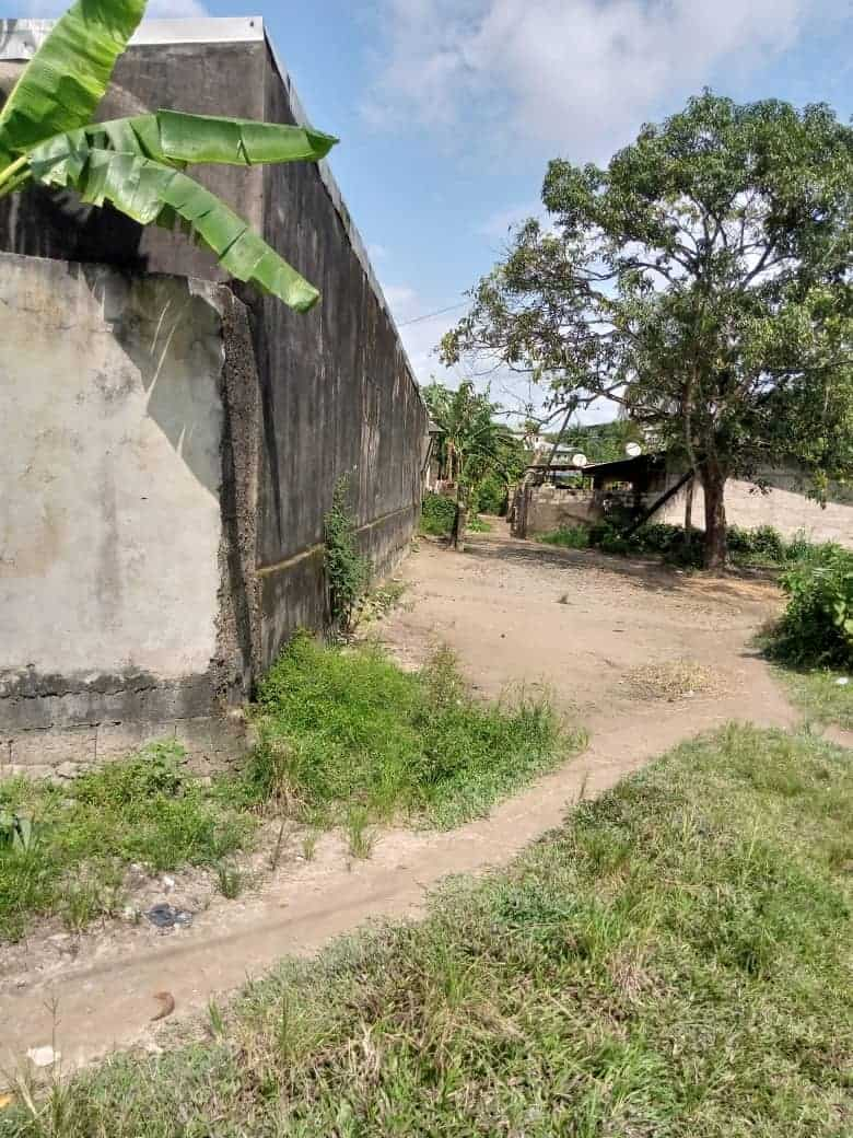 House (Concession) for sale - Douala, Nyala Bassa, Centre commercial - 4 living room(s), 15 bedroom(s), 4 bathroom(s) - 23 000 000 FCFA / month