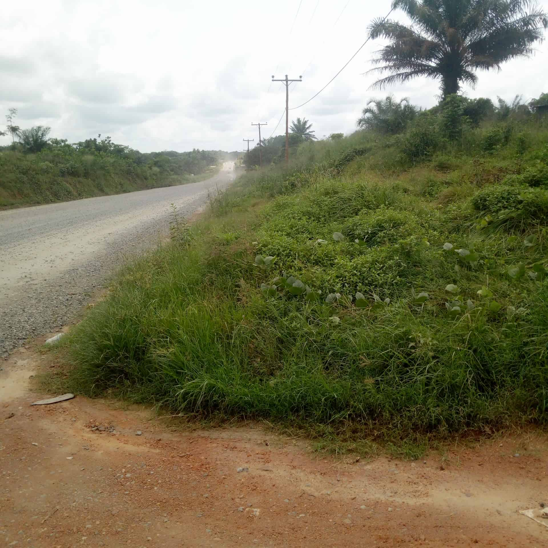 Land for sale at Douala, PK 25, Pk25 pk26 - 40000 m2 - 50 000 000 FCFA