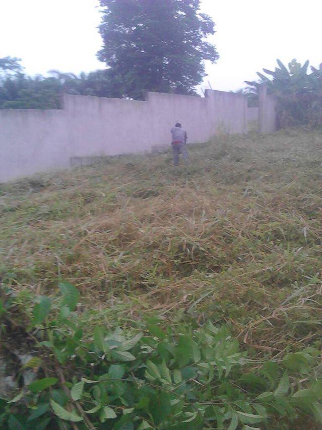 Land for sale at Yaoundé, Nkolbisson, mbalmayo - 3050 m2 - 30 500 000 FCFA