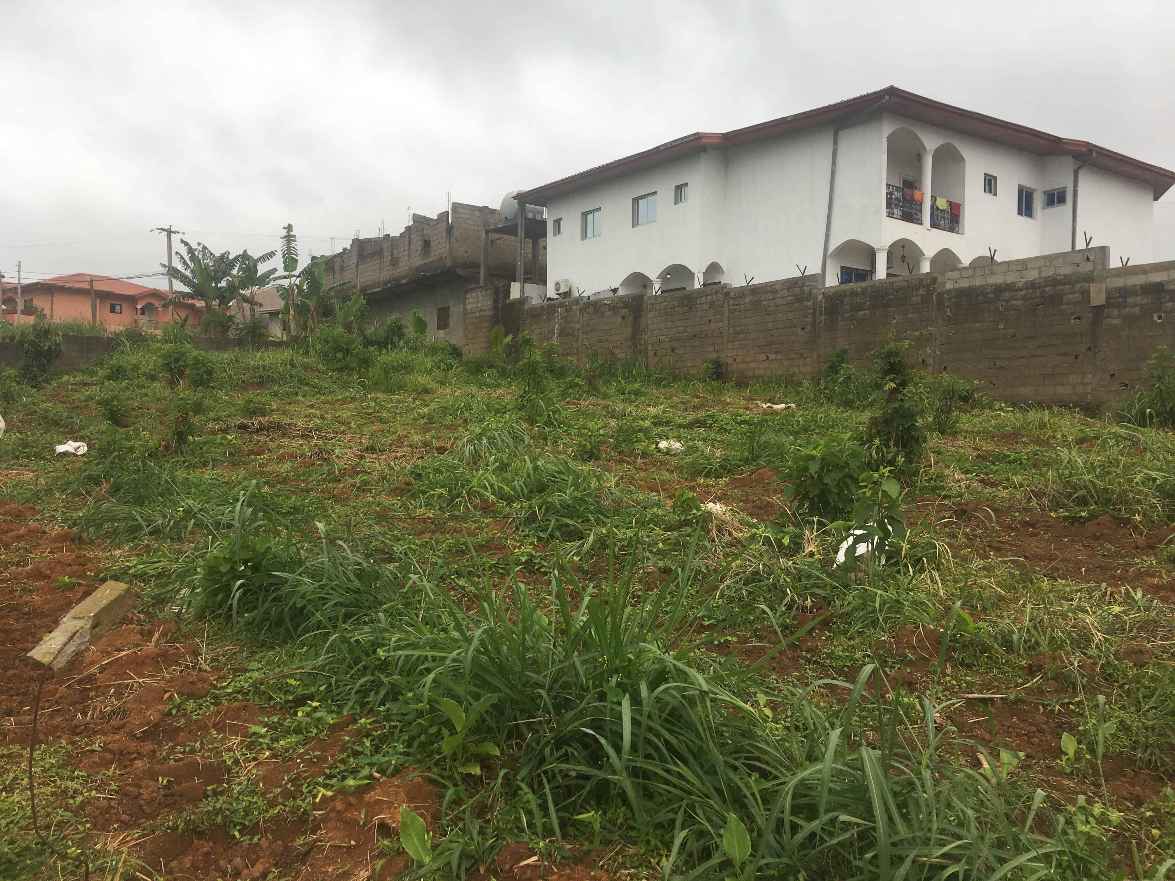 Land for sale at Yaoundé, Odza, Minkan - 1000 m2 - 30 000 000 FCFA