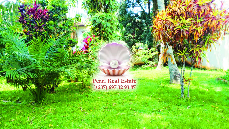 House (Duplex) to rent - Yaoundé, Bastos, Bastos - 2 living room(s), 4 bedroom(s), 4 bathroom(s) - 2 000 000 FCFA / month