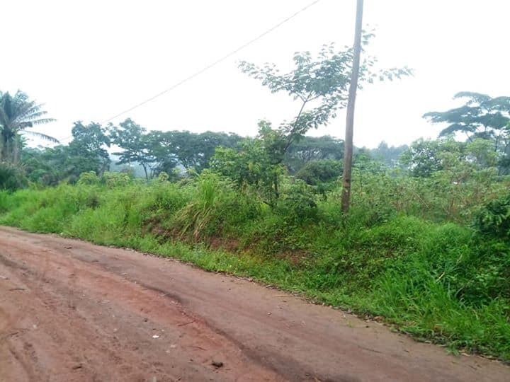 Land for sale at Yaoundé, Mbankomo, Binguela - 50000 m2 - 150 000 000 FCFA