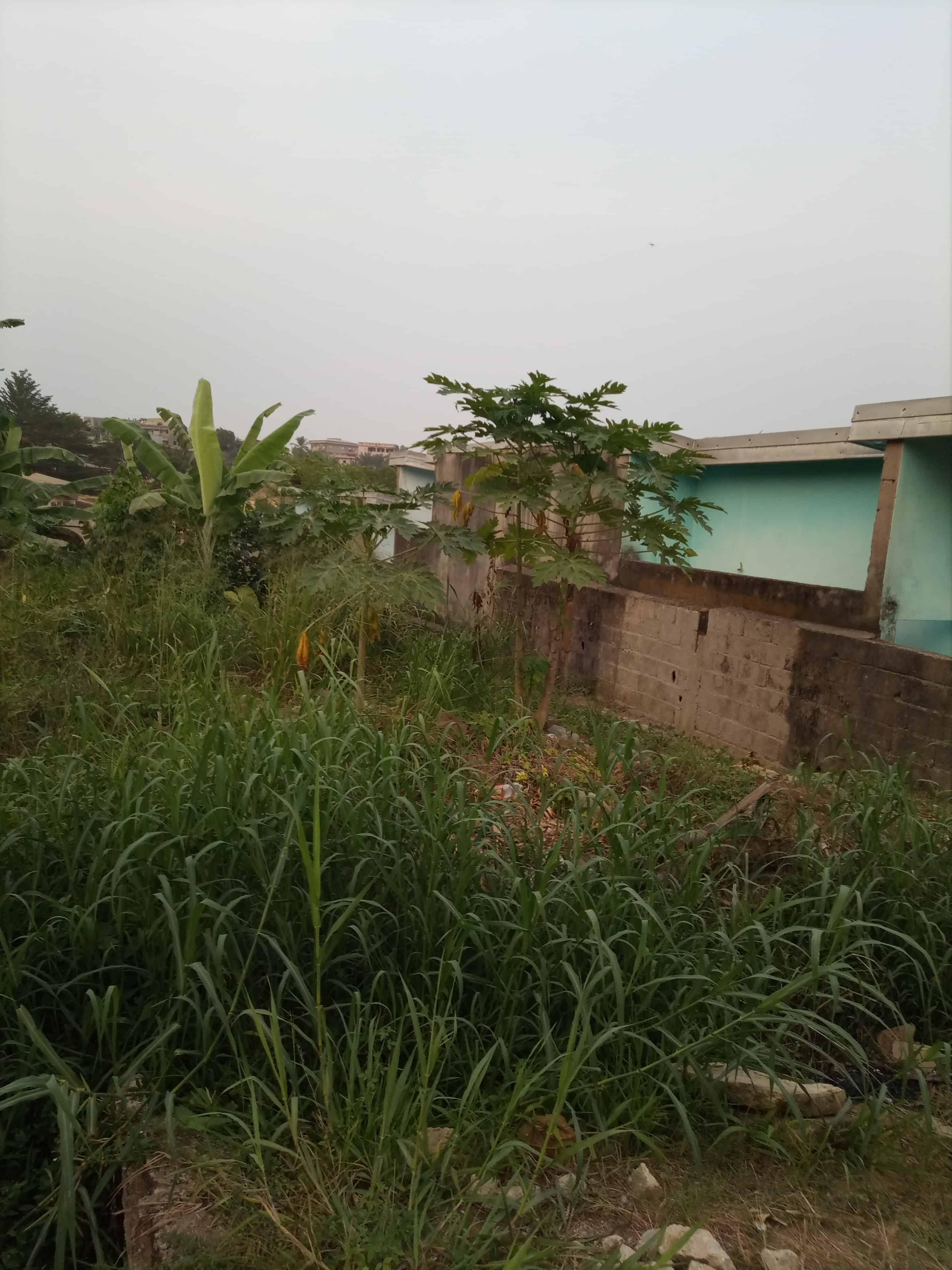 Land for sale at Douala, PK 11, C'est a pk12 - 791 m2 - 27 685 000 FCFA