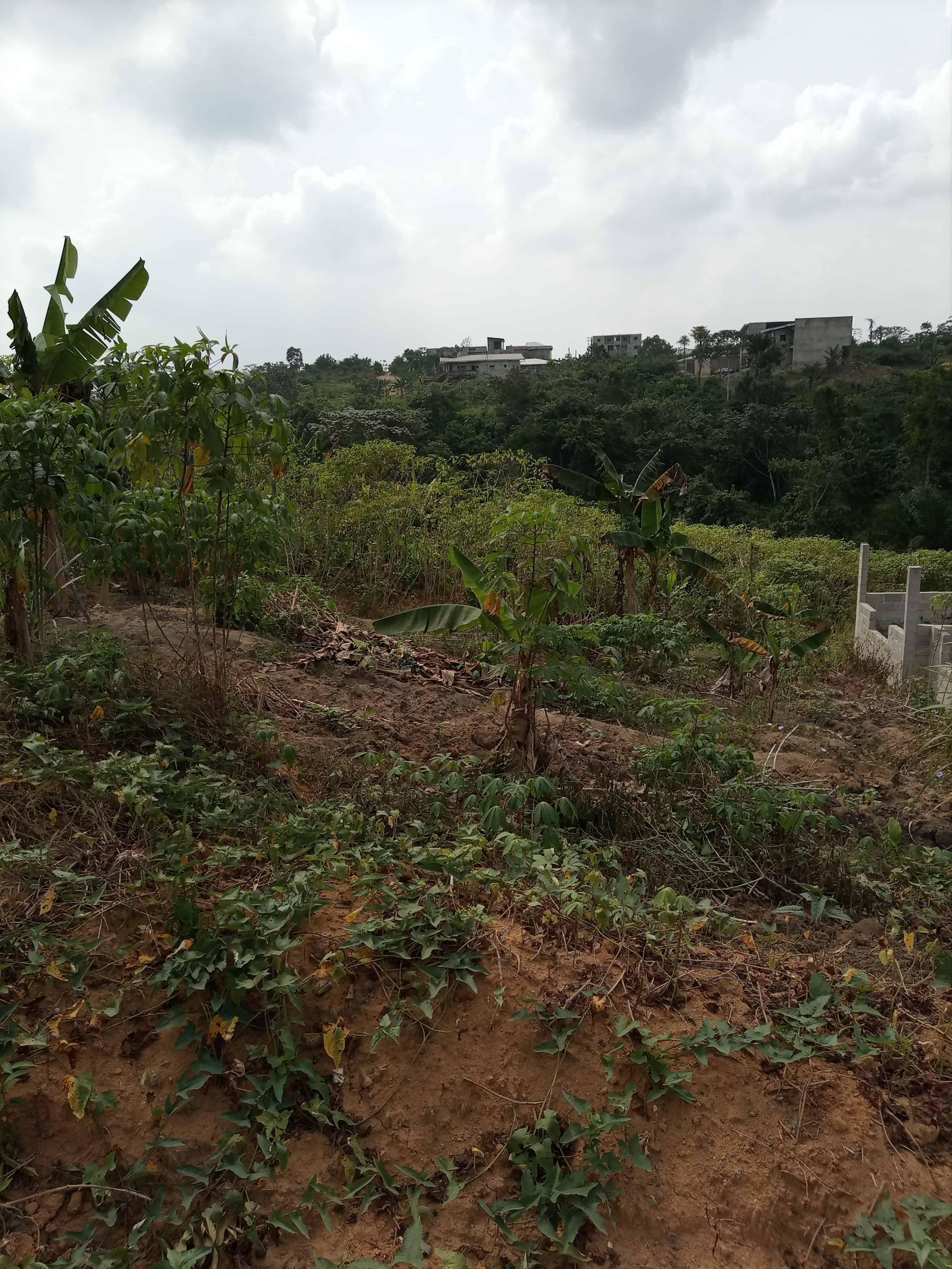 Land for sale at Douala, Logbessou I, Ver le carrefour Njoya - 600 m2 - 60 000 000 FCFA
