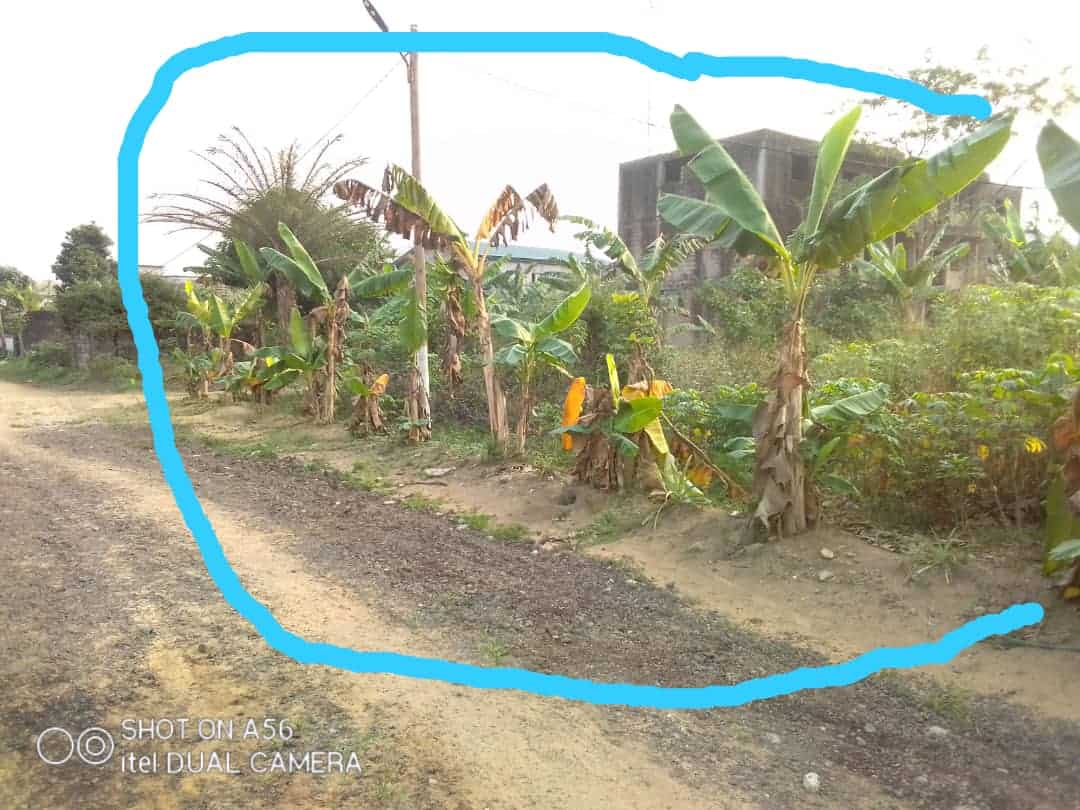 Land for sale at Douala, Lendi, Ver la chefferie - 1268 m2 - 38 040 000 FCFA