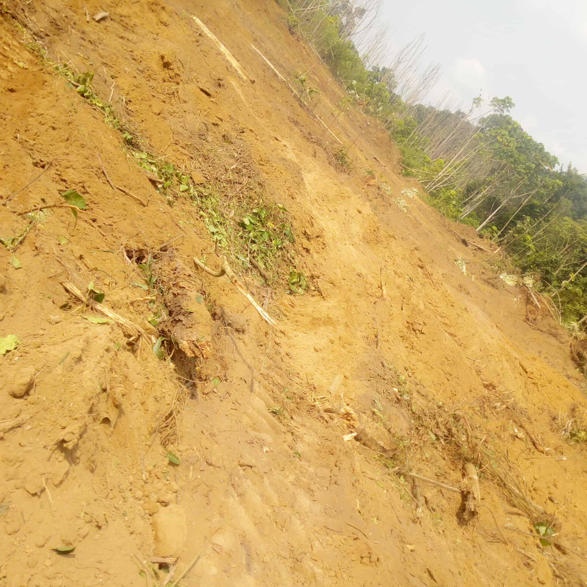 Terrain à vendre - Douala, Bassa, P36 - 200000 m2 - 8 000 000 FCFA