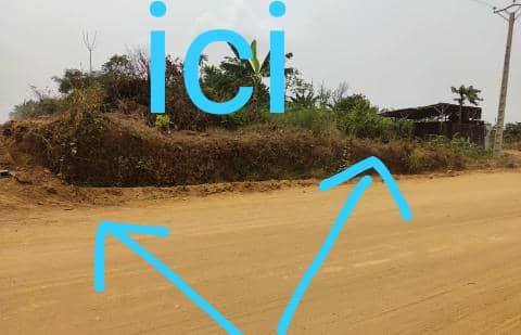 Terrain à vendre - Douala, Lendi, Avant quartier général - 500 m2 - 17 500 000 FCFA