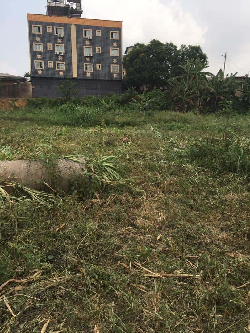Terrain à vendre - Douala, Kotto, Ver kotto village - 891 m2 - 60 970 000 FCFA