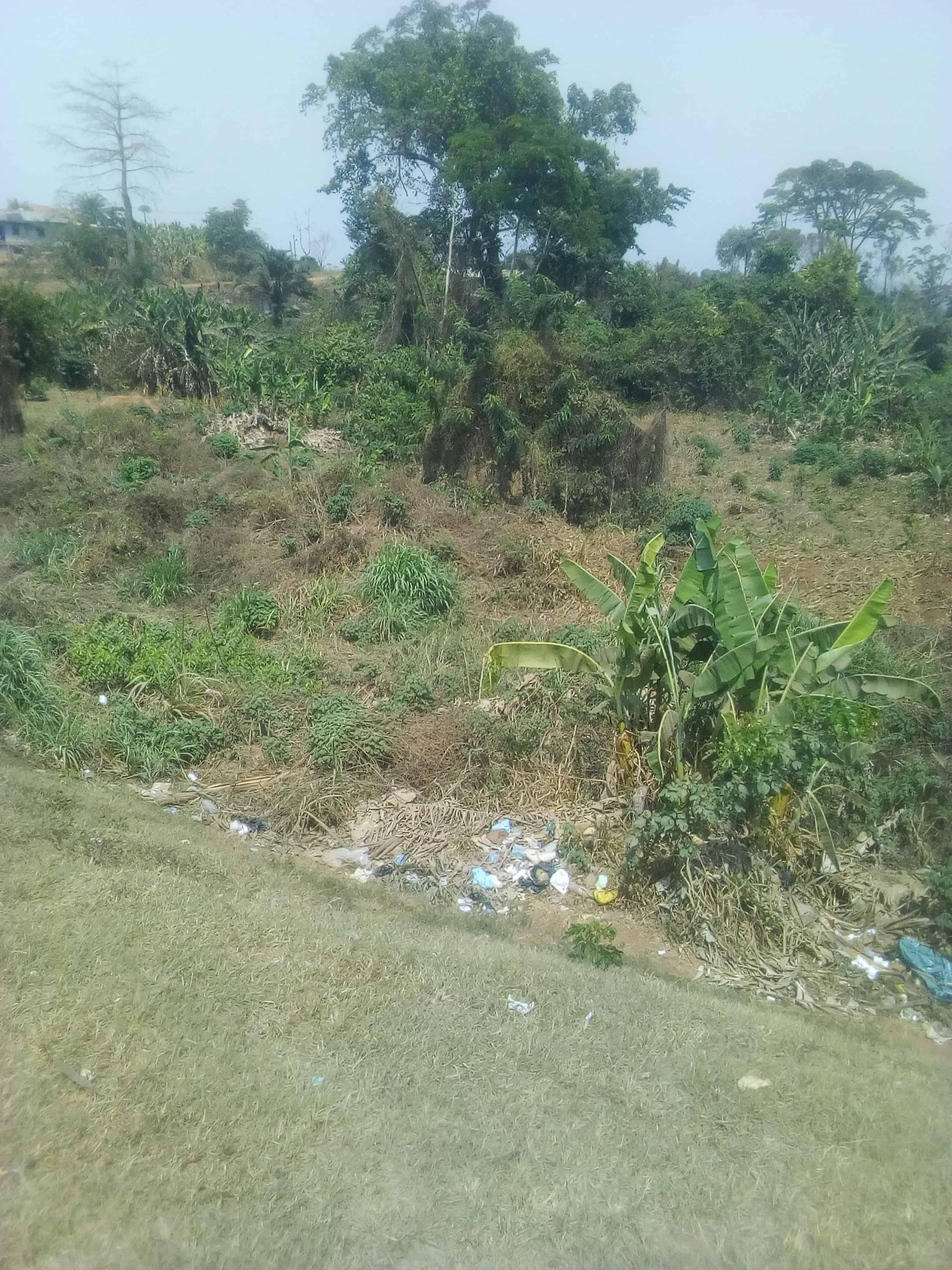 Land for sale at Yaoundé, Olembe, Après nkozoa terrain commercial (en bordure de route) - 5000 m2 - 200 000 000 FCFA