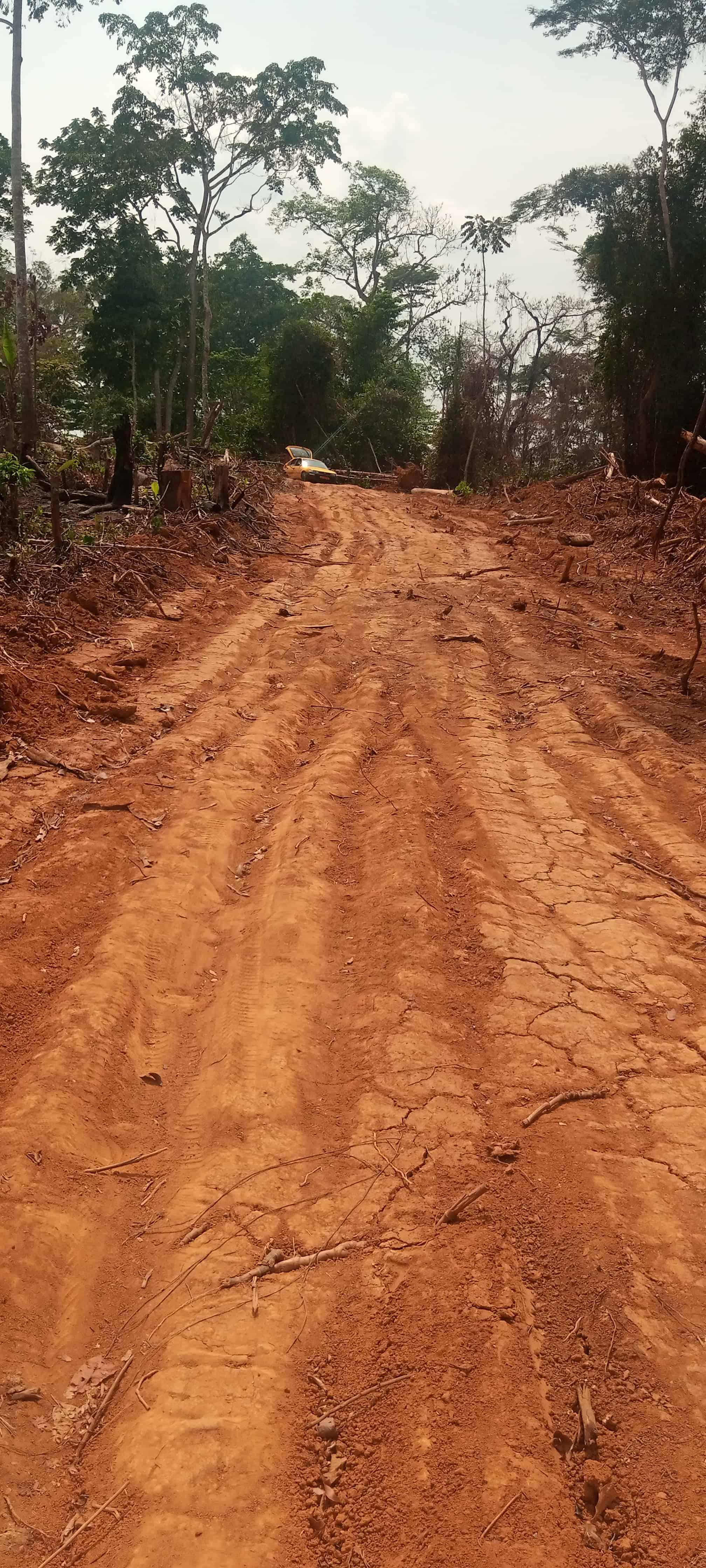 Land for sale at Yaoundé, Nkolafeme, Nkolafamba - 1000 m2 - 4 000 000 FCFA