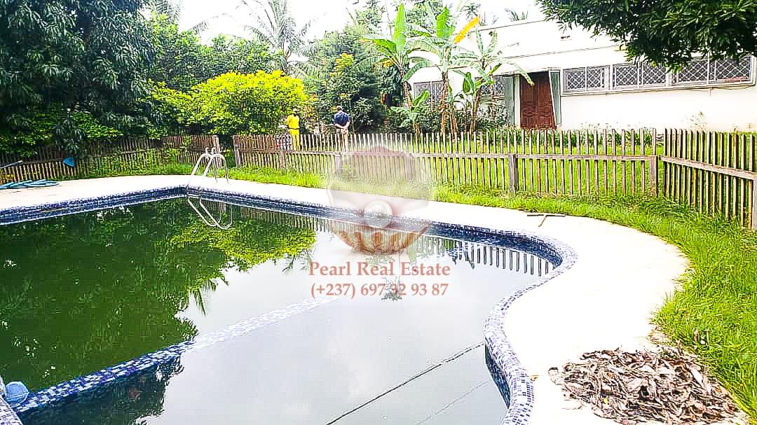 House (Villa) to rent - Yaoundé, Bastos, Bastos - 1 living room(s), 4 bedroom(s), 3 bathroom(s) - 3 000 000 FCFA / month