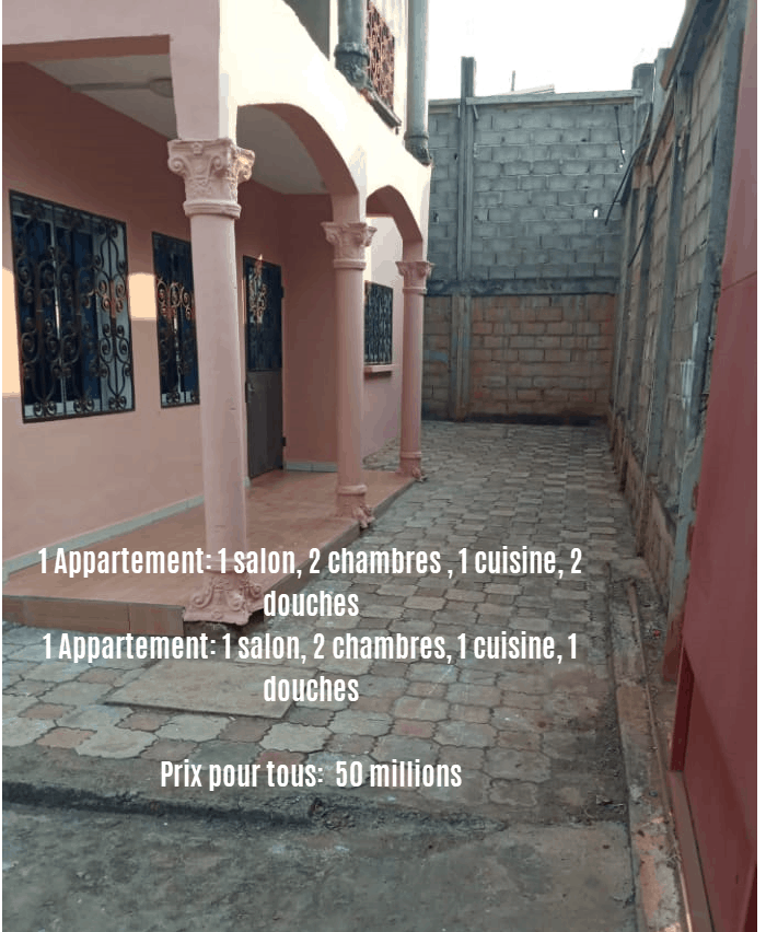 House (Villa) for sale - Yaoundé, Eleveur, ngousso - 2 living room(s), 4 bedroom(s), 4 bathroom(s) - 50 000 000 FCFA / month