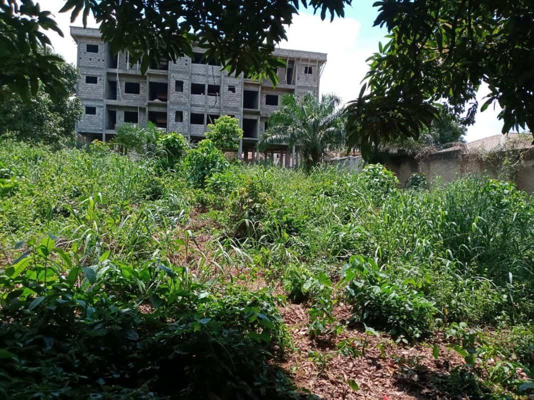Land for sale at Yaoundé, Centre administratif, nkolbisson - 40000 m2 - 100 000 FCFA