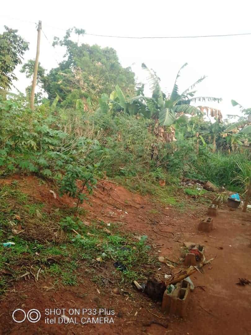 Land for sale at Yaoundé, Nkolbisson, 500 - 500 m2 - 9 000 000 FCFA