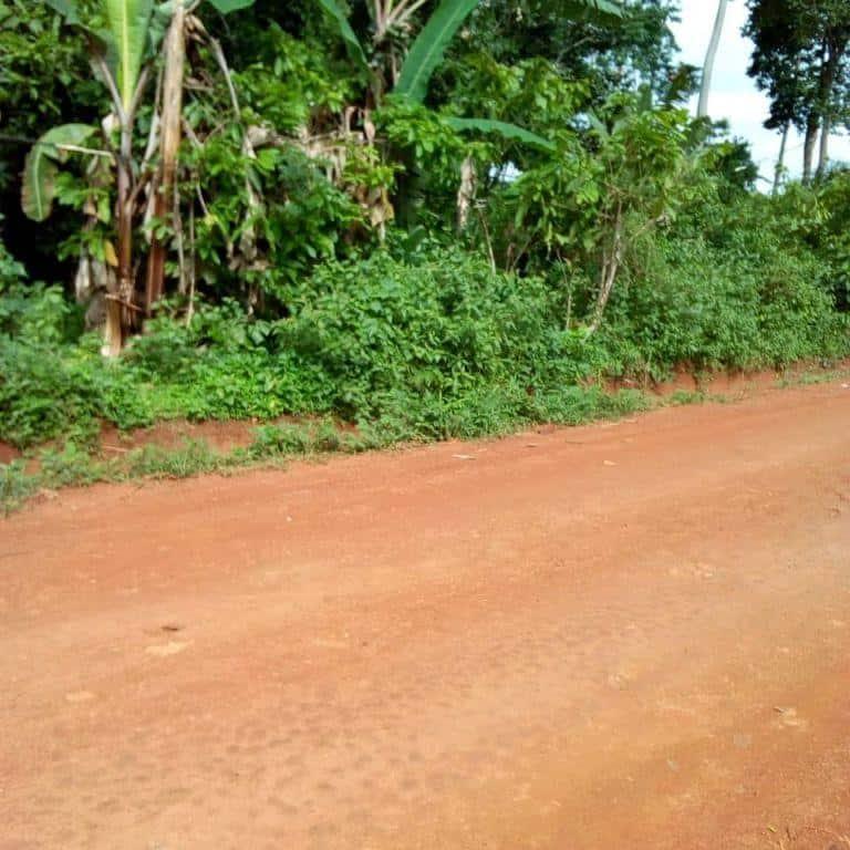 Land for sale at Yaoundé, Ekoumdoum, VILLE - 50000 m2 - 200 000 000 FCFA