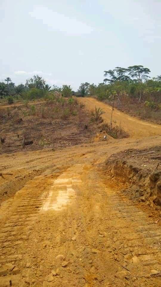 Land for sale at Douala, PK 27, Entrée Guinness ,or vert - 10000 m2 - 5 000 000 FCFA