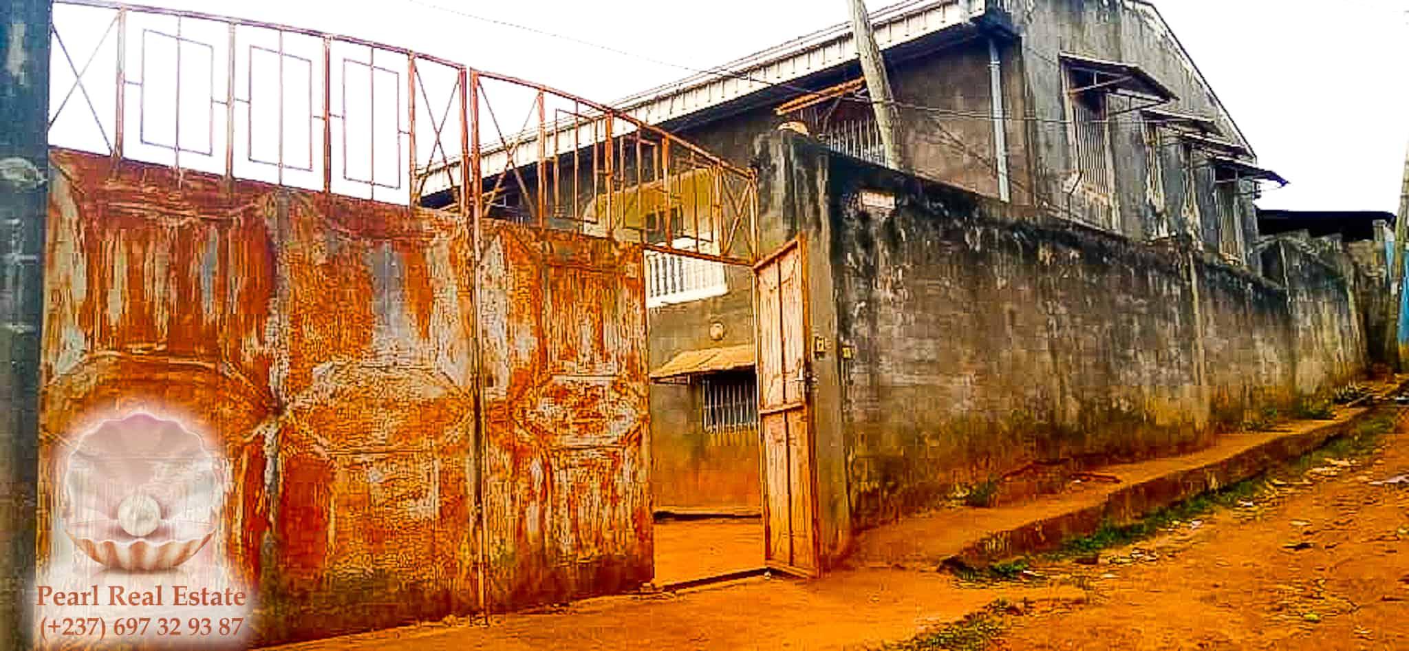 House (Villa) for sale - Yaoundé, Emana, Borne fontaine - 1 living room(s), 4 bedroom(s), 3 bathroom(s) - 40 000 000 FCFA / month