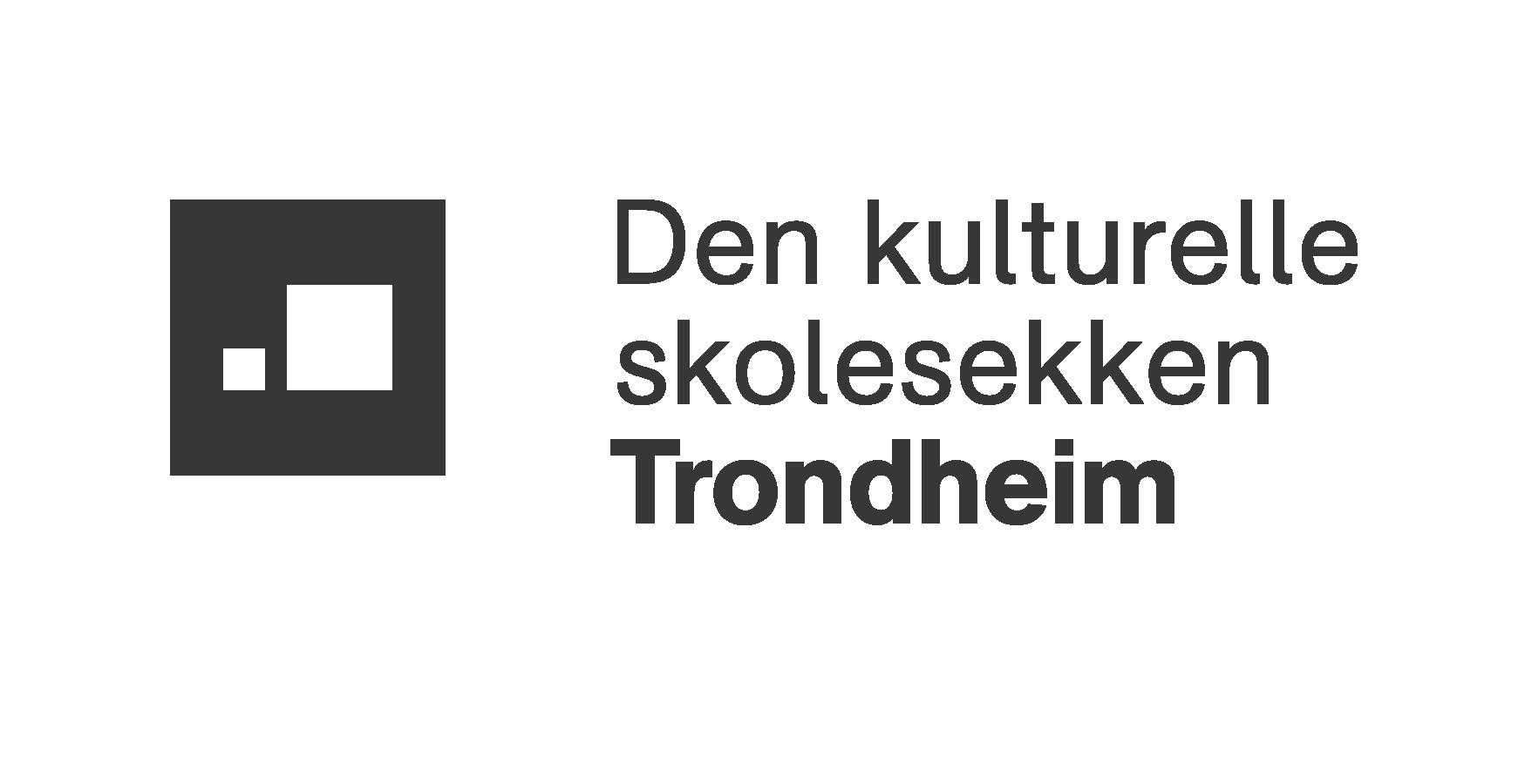 Trondheim DKS