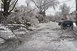 This photo from the Toronto ice storm illustrates the power of weather
