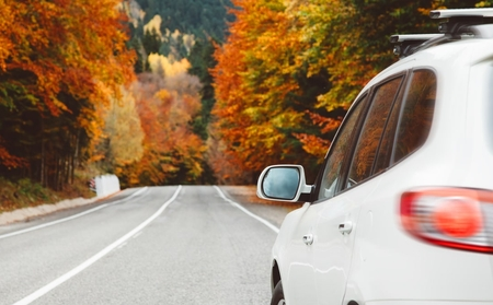 A white car driving on a road where the leaves on the trees have all changed colour.