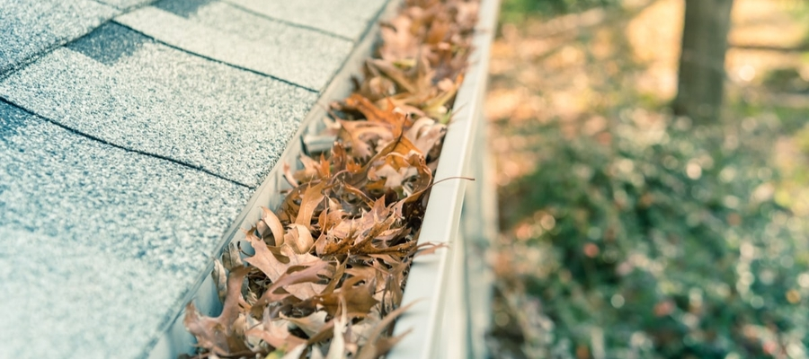 A closeup of a home's gutters that are full of leaves and needs to be cleaned out.
