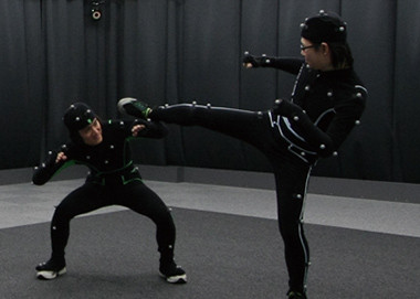 Vicon motion capture systems
