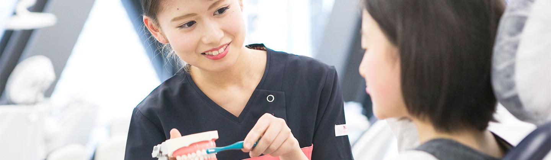歯科医療学部                        歯科衛生学科