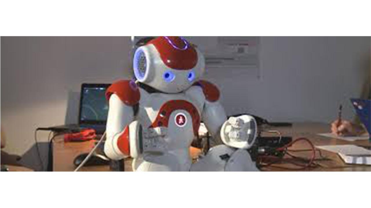 Living With Robots ( Vivre avec les Robots)