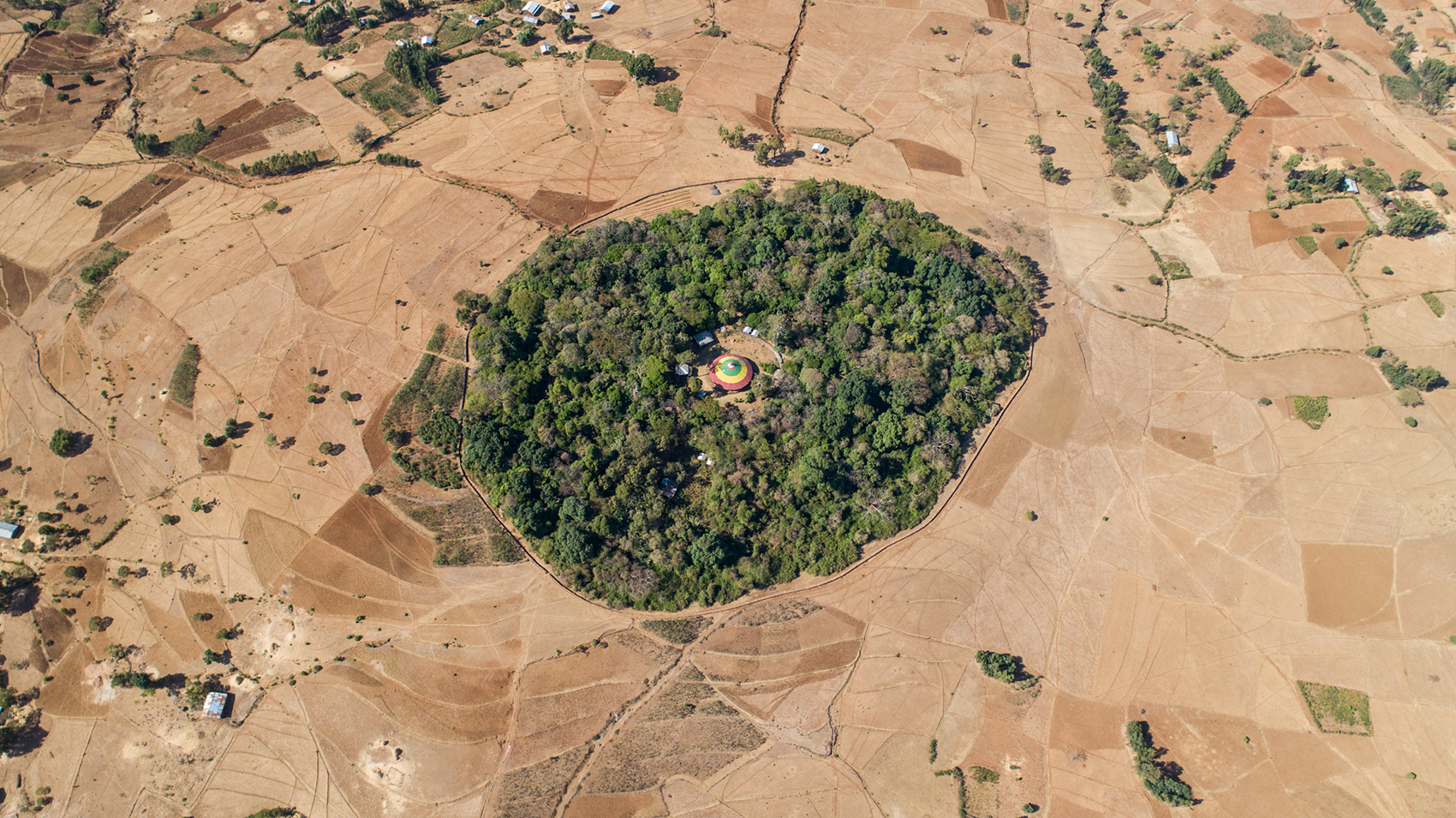 The Church Forests of Ethiopia