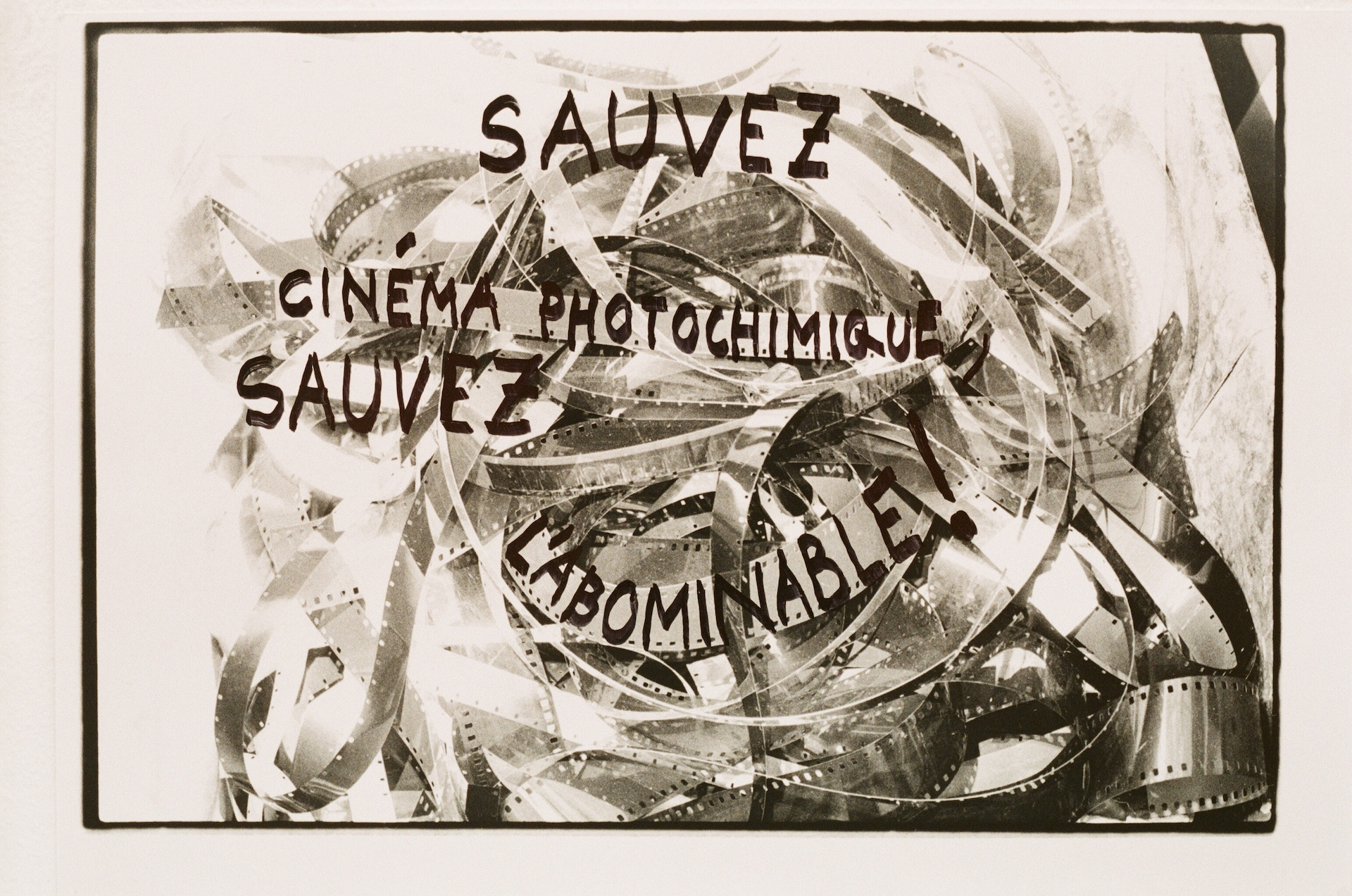 Sauvez l'Abominable (Save l'Abominable)