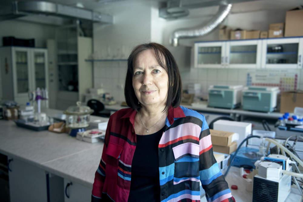 Hledáme koronavirus v odpadní vodě, říká česká expertka. Cílem je předpovědět další vlnu nákazy