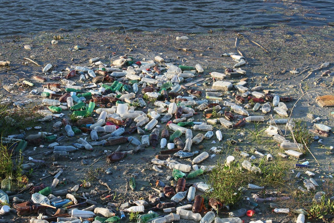 Pixabay/Emilian Robert Vicol: Plasty v životním prostředí