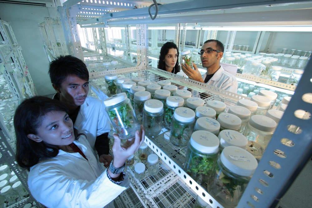 Čínská vláda bude schvalovat vědecké články o koronaviru