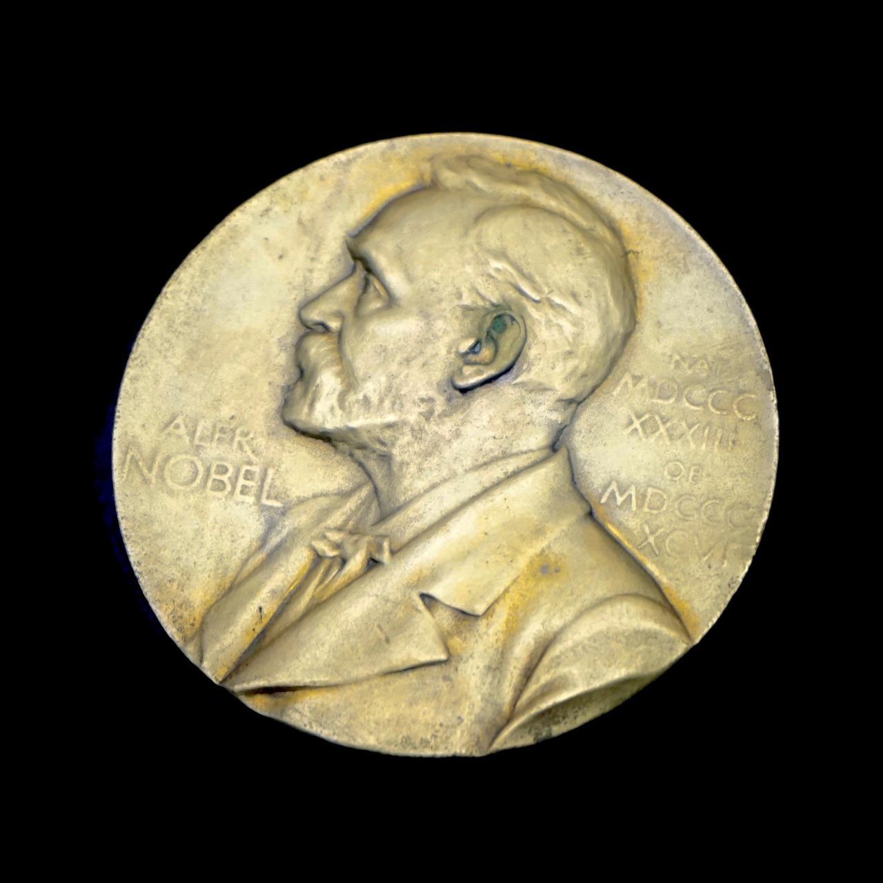 Pixabay/Florian Pircher: Nobelova cena