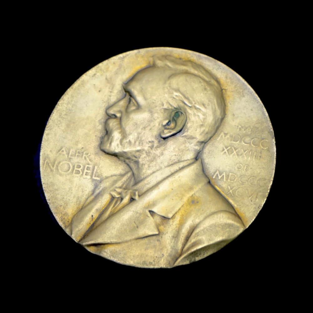 Nobelovým cenám dominuje pět oborů