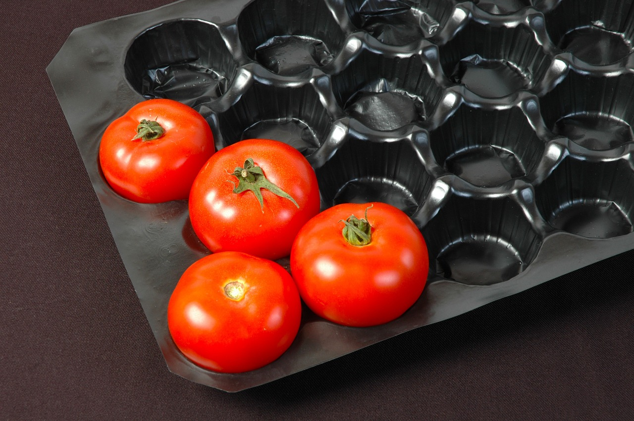 Pixabay/vedat zorluer: Ve Zlíně vyvíjejí plastové dózy na potraviny, které se rychleji rozloží