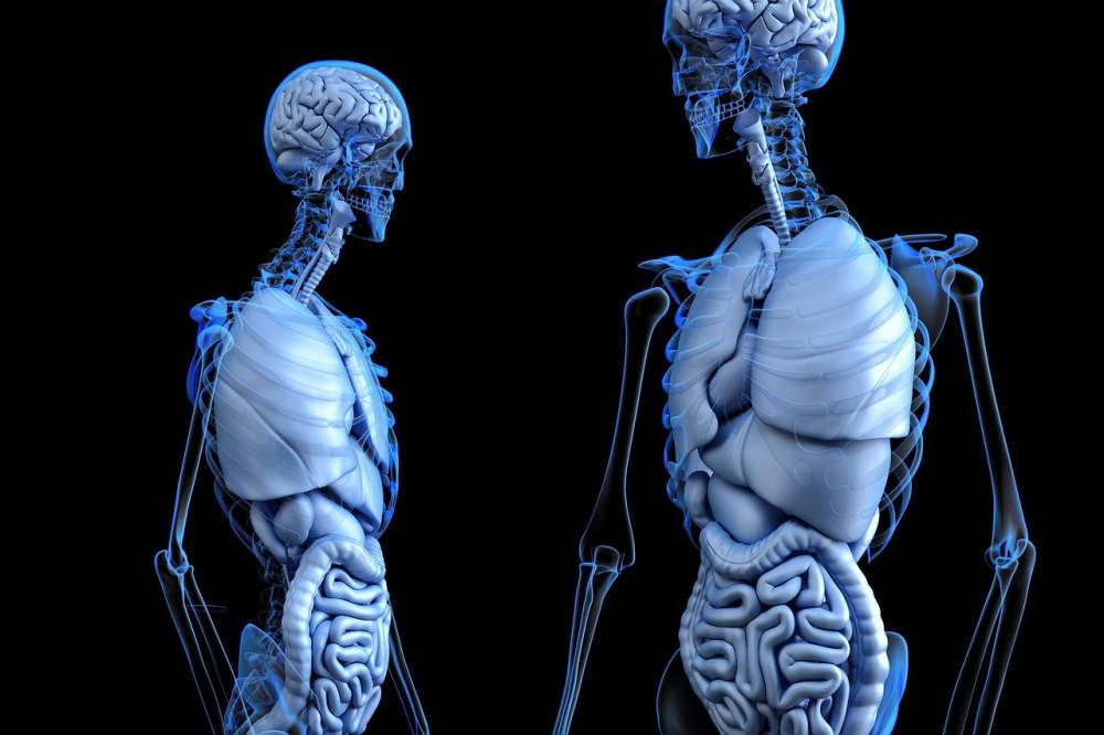 Jak se vyhnout nepříjemné kolonoskopii? Pomoci by měla nová metoda analýzy dechu