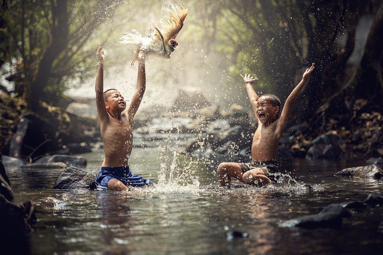 Pixabay/Sasin Tipchai: Voda a jeji analýza