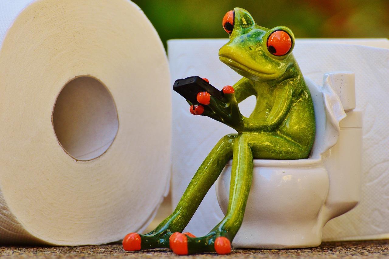Pixabay, Alexas_Fotos: Plynový chromatograf a hmotnostní spektrometr pro diagnostiku přimo na toaletě.