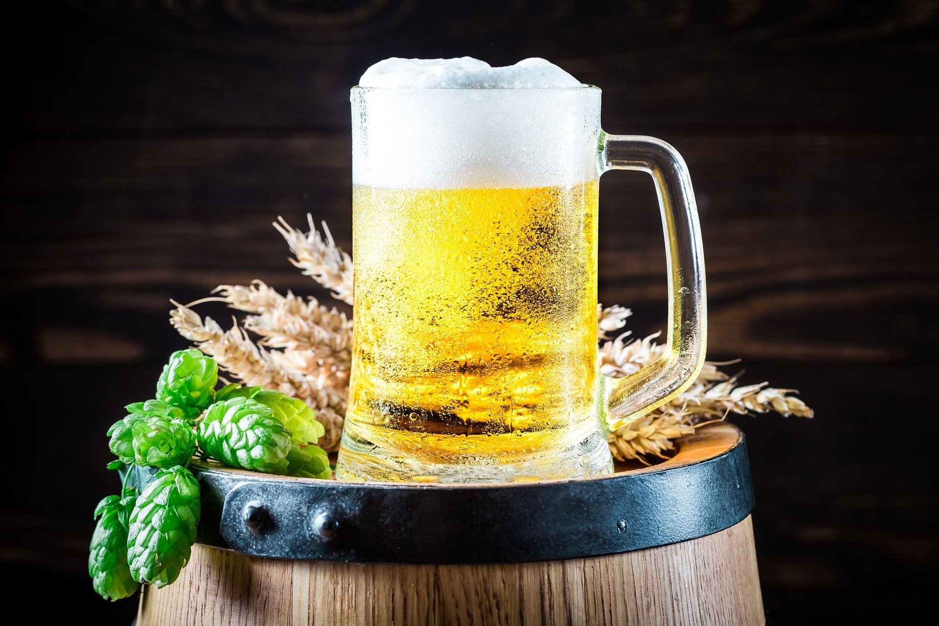 Pixabay/carolineandrade: Nové trendy v kapalinové chromatografii a jejich využití v analýze piva a pivovarských surovin. Část 2. Stanovení cis/trans- izomerů iso-α-hořkých kyselin v pivu metodou ultraúčinné kapalinové chromatografie.