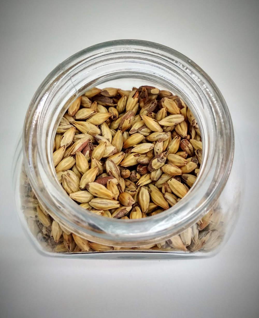 Stanovení obsahu šťavelové kyseliny v ječmeni a sladu pomocí RP-HPLC