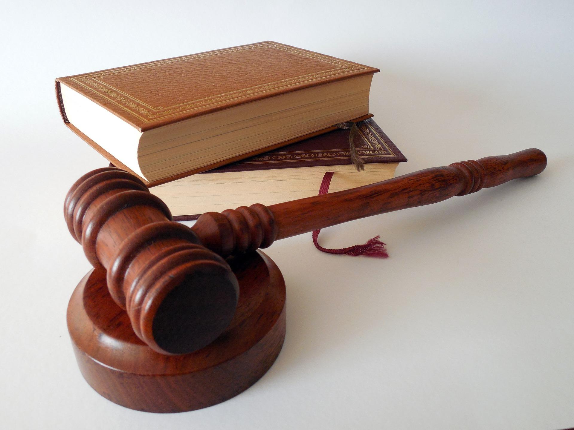 Pixabay/succo: Novela zákona o veřejných zakázkách zásadně komplikuje situaci ve výzkumu a vývoji