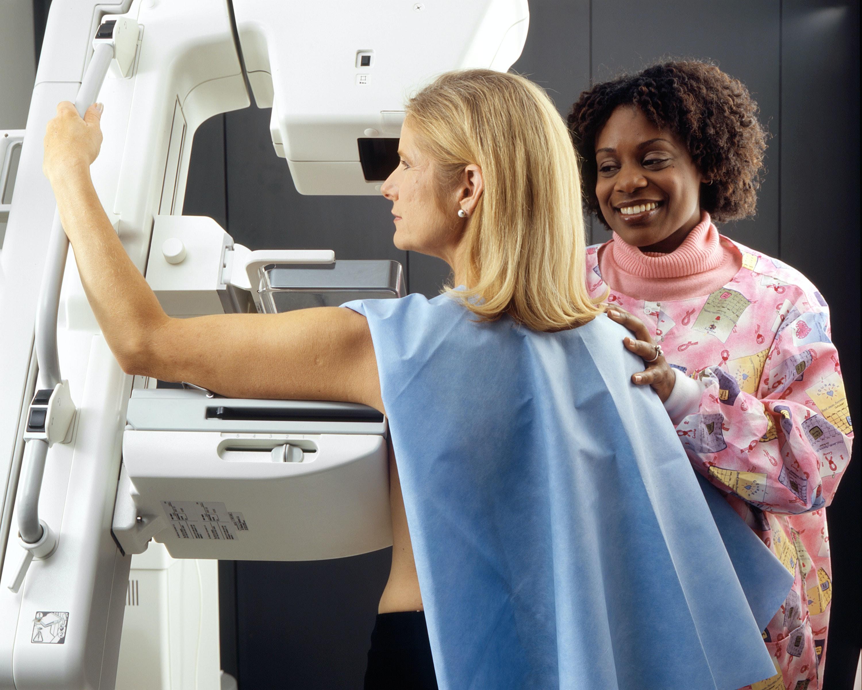 Unsplash/National Cancer Institute: Vědci v Brně otestovali přesnější metodu pro určení podtypu rakoviny prsu