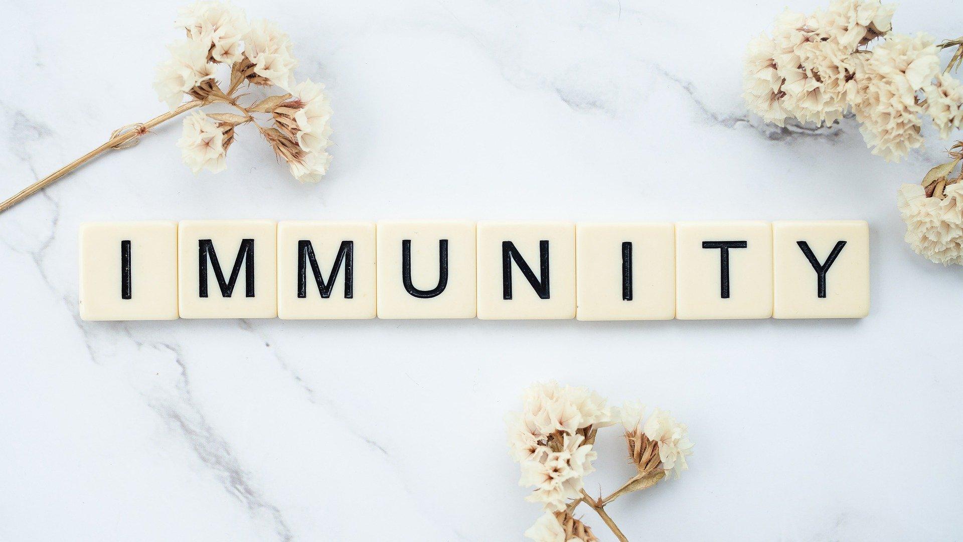 Pixabay/healthguru: Lidská imunita v první linii