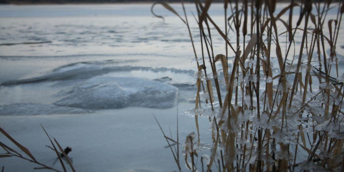 Kinkkutemppu tekee hyvää! - Lahti Aqua