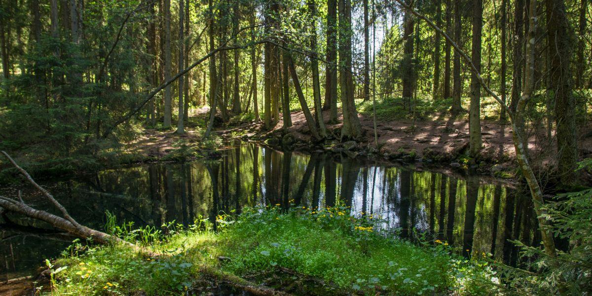 Vietä päivä Elämänlähteellä katsomalla tuore vesihuoltotoimintaa kuvaava videomme - Lahti Aqua