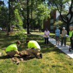 Team members and senior residents enjoy a day of planting trees on Arbor Day
